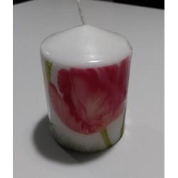 Vela tulipanes 2